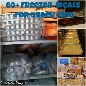 freezermeals.jpg