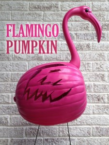 flamingo-pumpkin-type-paper-and-fox