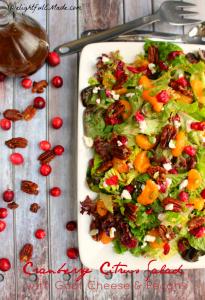 Cranberry-Citrus-Salad-Goat-Cheese-Pecans-DelightfulEMade.com-vert4-wtxt-703x1024