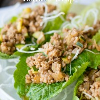 Pork and Veggie Lettuce Wraps- great recipe for healthy eating, but tastes so good you'll want them all the time.