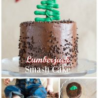 Lumberjack Smash Cake for boys first birthday